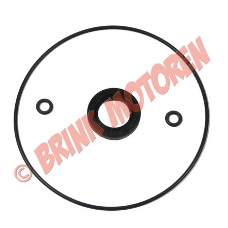 Pitbike dirtbike ontsteking plaat keerring en o-ringset (1)